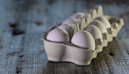 """【ふぞろいのたまごたち】大通のさっぽろテレビ塔地下に""""卵料理専門店""""がオープン!"""