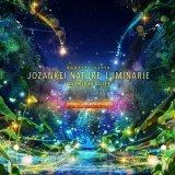 定山渓にてライトアップイベント『JOZANKEI NATURE LUMINARIE -WATER LIGHT VALLEY-』が7月1日(木)より開催しています!