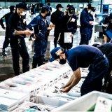 札幌市中央卸売市場初の試み! 市場内から海鮮の魅力を生配信する『カネシメEXPO 2021』が9月27日(月),28日(火)に開催!