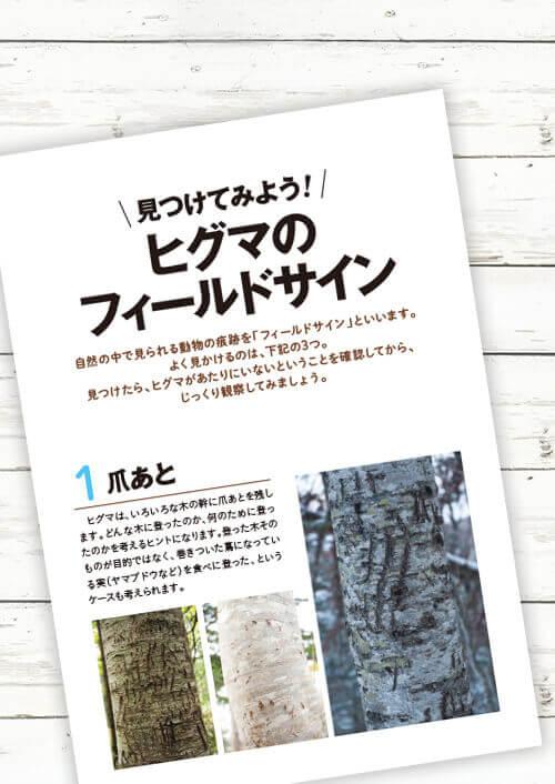 『命のつながり❶ 森と川、山と海 ヒグマの旅』-おまけ小冊子