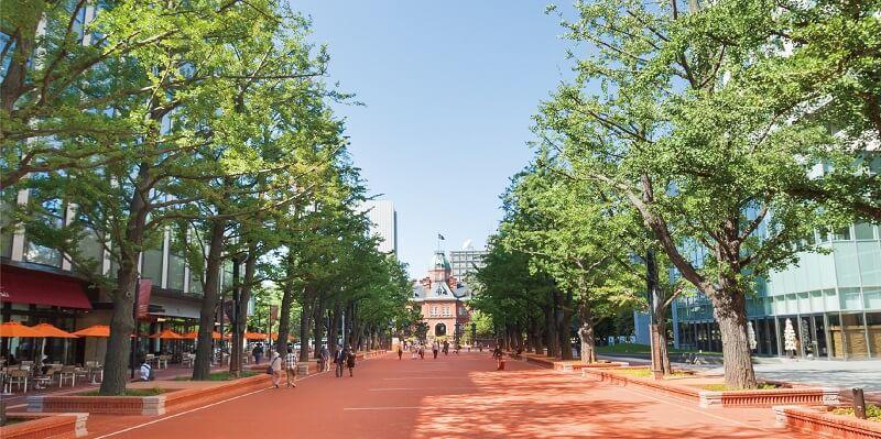 「SAPPOROフラワーカーペット」-PARALLEL SAPPORO KITA3JO『現実の「札幌市北3条広場」』